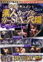 貼身採訪紀錄片 素人情侶 車震聖地 3小時DX